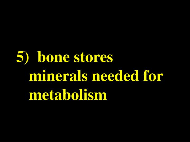 5)  bone stores minerals needed for metabolism