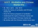unit 2 acrobatics and chinese martial arts