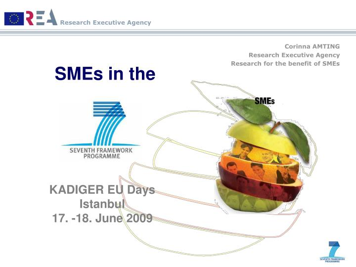 corinna amting research executive agency research for the benefit of smes n.