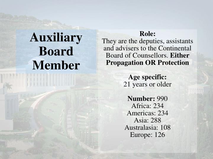 Auxiliary Board Member