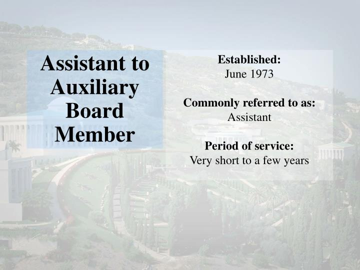 Assistant to Auxiliary Board Member