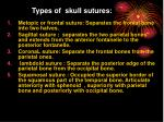 types of skull sutures