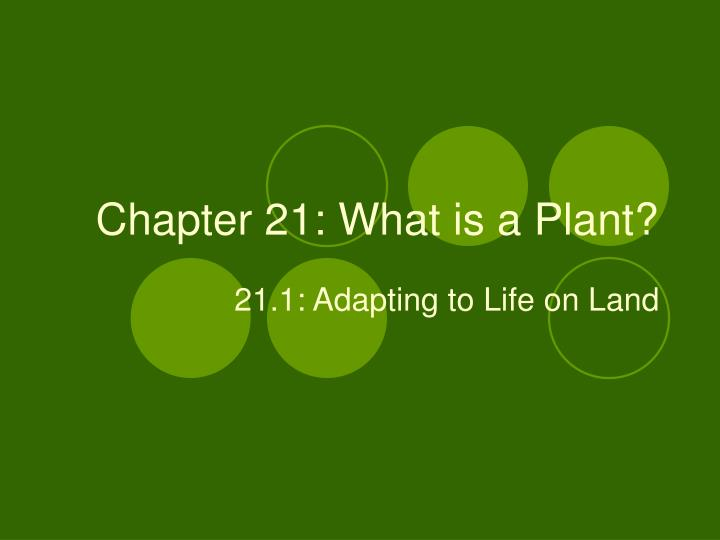 chapter 21 what is a plant n.
