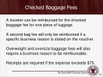 checked baggage fees