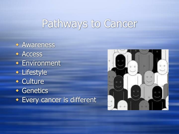 Pathways to cancer
