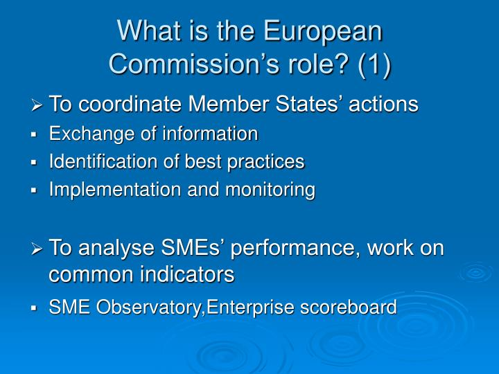 What is the European Commission's role? (1)