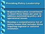 providing policy leadership