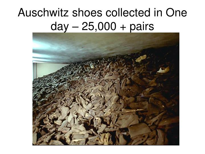 Auschwitz shoes collected in One day – 25,000 + pairs