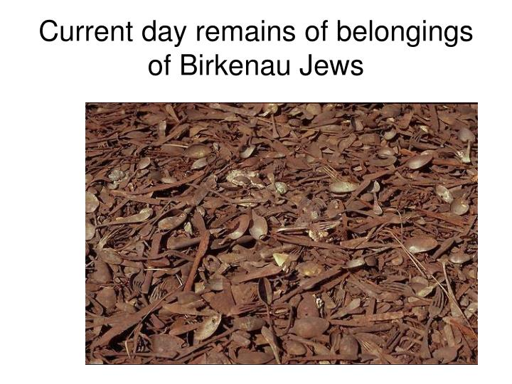 Current day remains of belongings of Birkenau Jews