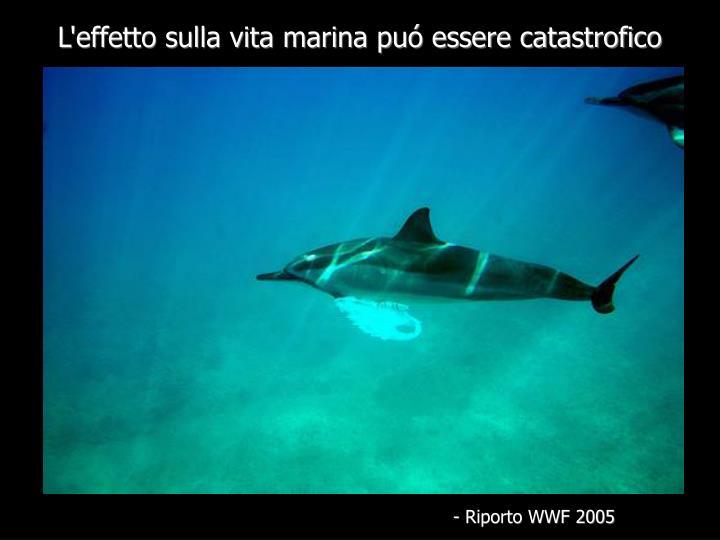 L'effetto sulla vita marina puó essere catastrofico