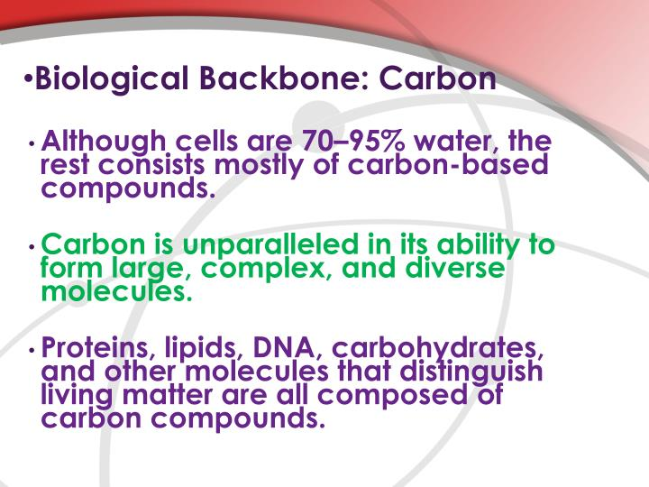 Biological Backbone: Carbon