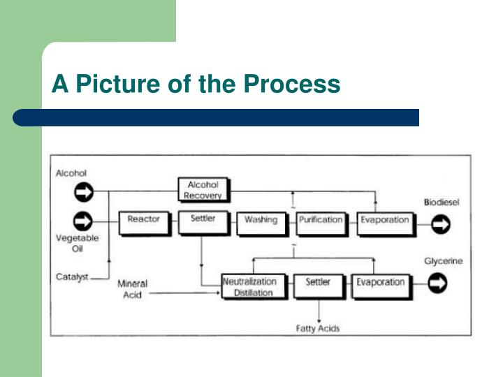 A Picture of the Process
