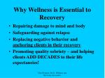 why wellness is essential to recovery