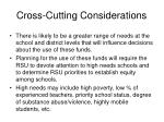 cross cutting considerations