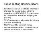 cross cutting considerations2