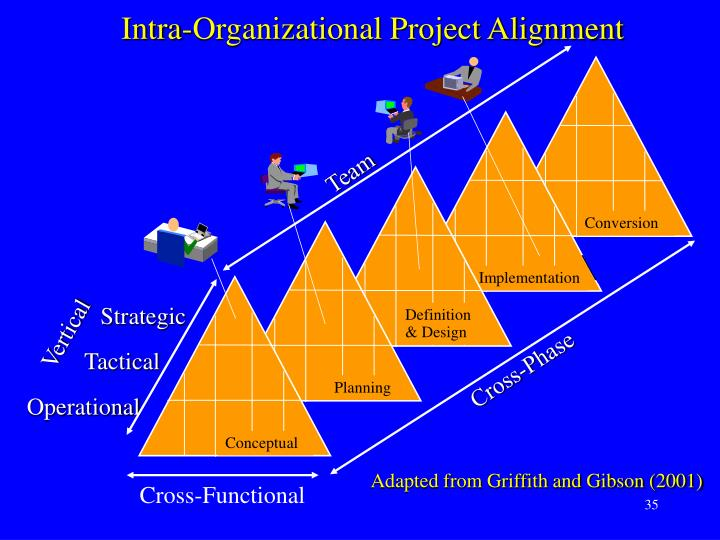 Intra-Organizational Project Alignment