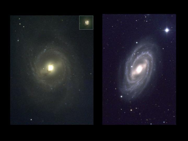 Barred spiral galaxies