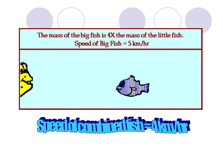 Speed of combined fish = 4 km/hr