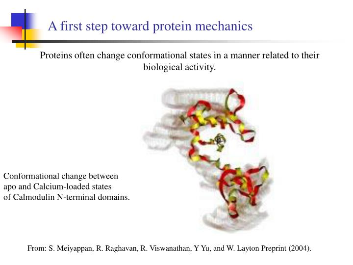 A first step toward protein mechanics