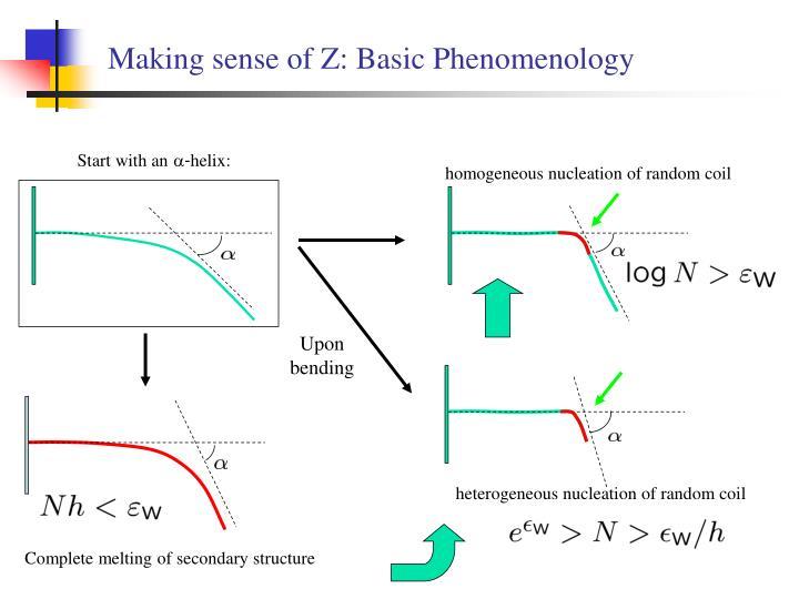 Making sense of Z: Basic Phenomenology