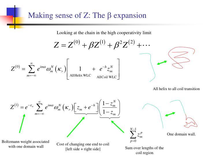 Making sense of Z: The