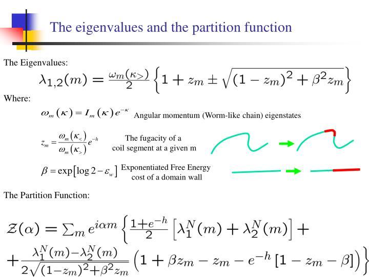 Angular momentum (Worm-like chain) eigenstates