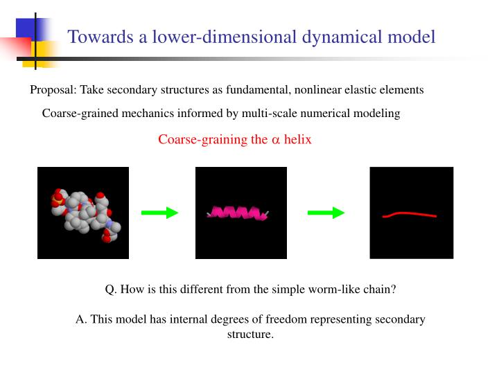Towards a lower-dimensional dynamical model