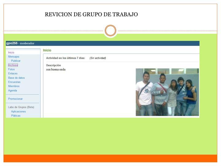 REVICION DE GRUPO DE TRABAJO