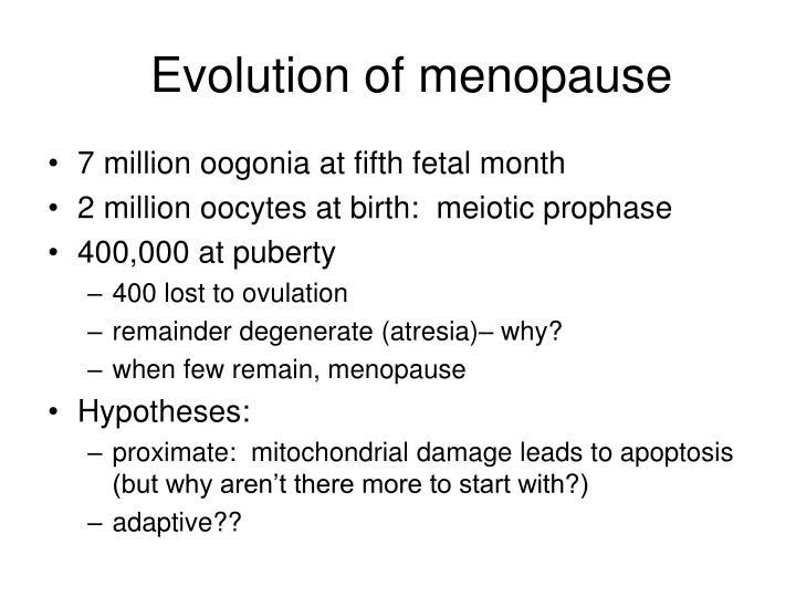 Evolution of menopause