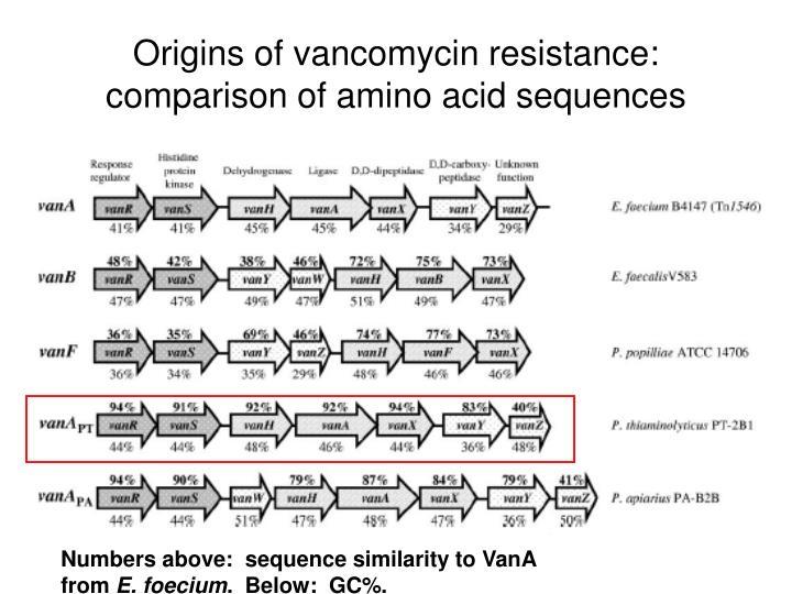 Origins of vancomycin resistance:  comparison of amino acid sequences