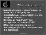 what is apple inc