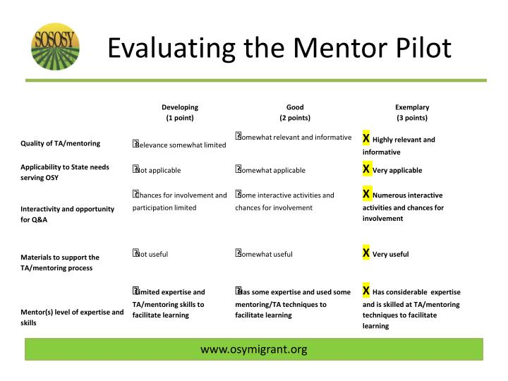 Evaluating the Mentor Pilot
