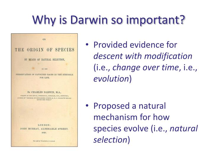 Explain The Theory Of Natural Selection As Proposed By Darwin