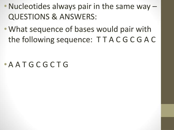 Nucleotides always pair in the same way – QUESTIONS & ANSWERS: