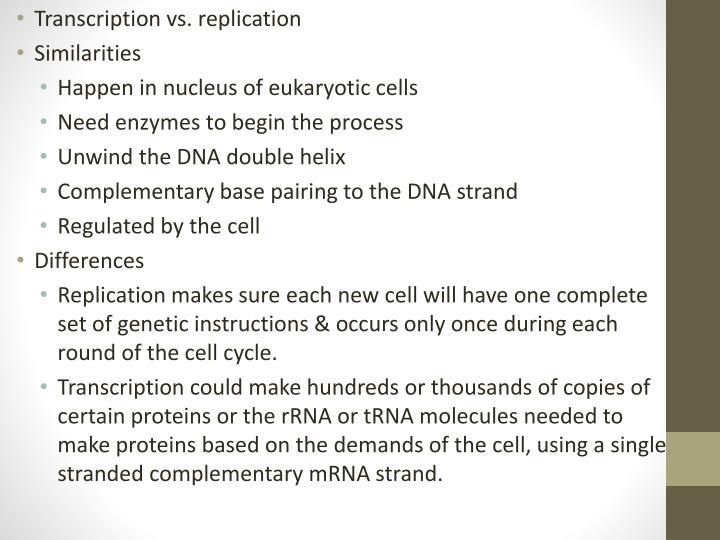 Transcription vs. replication