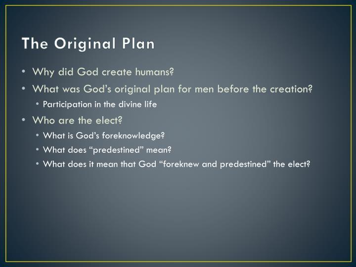 The original plan