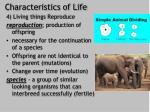 characteristics of life3