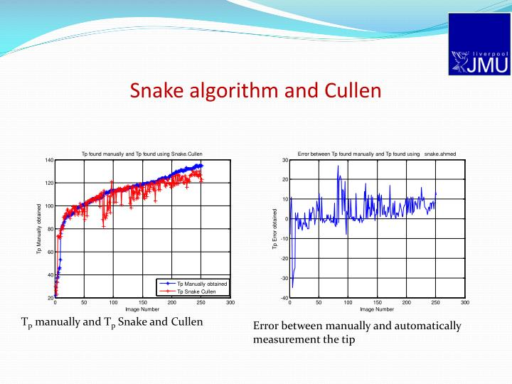 Snake algorithm and Cullen