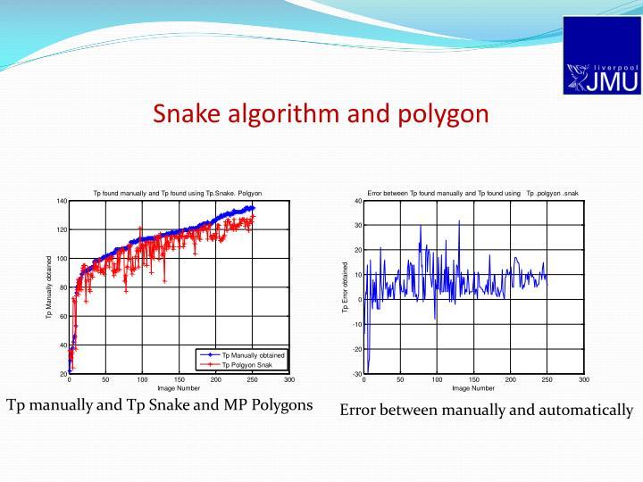 Snake algorithm and polygon