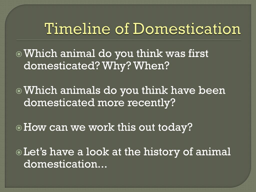 PPT - The Domestication of Animals PowerPoint Presentation