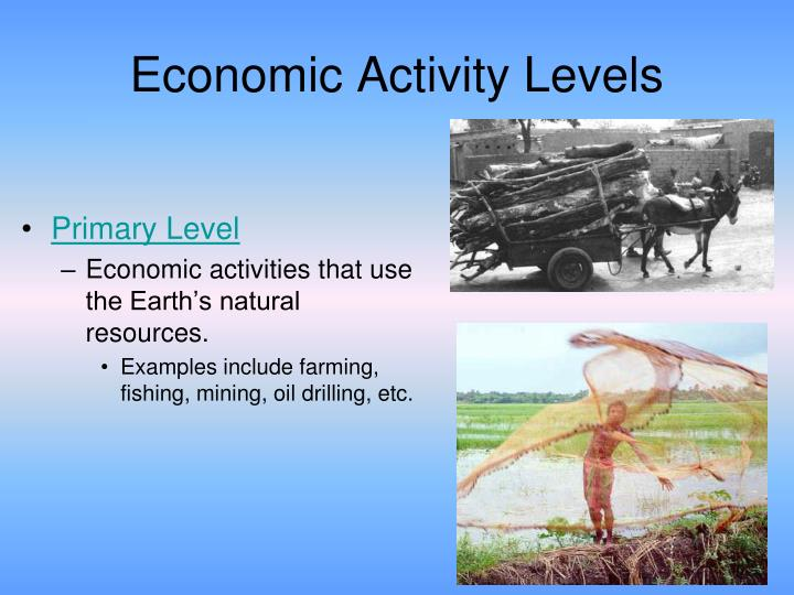 Ppt Economic Activity Levels Powerpoint Presentation Id1837855