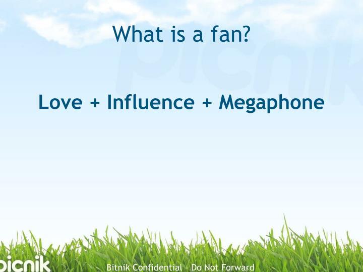 What is a fan?