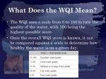 what does the wqi mean