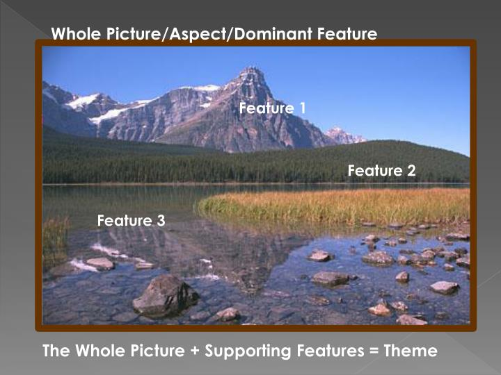 Whole Picture/Aspect/Dominant Feature