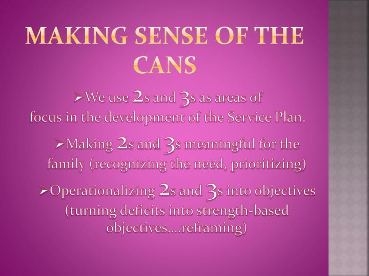 Making Sense of the CANS
