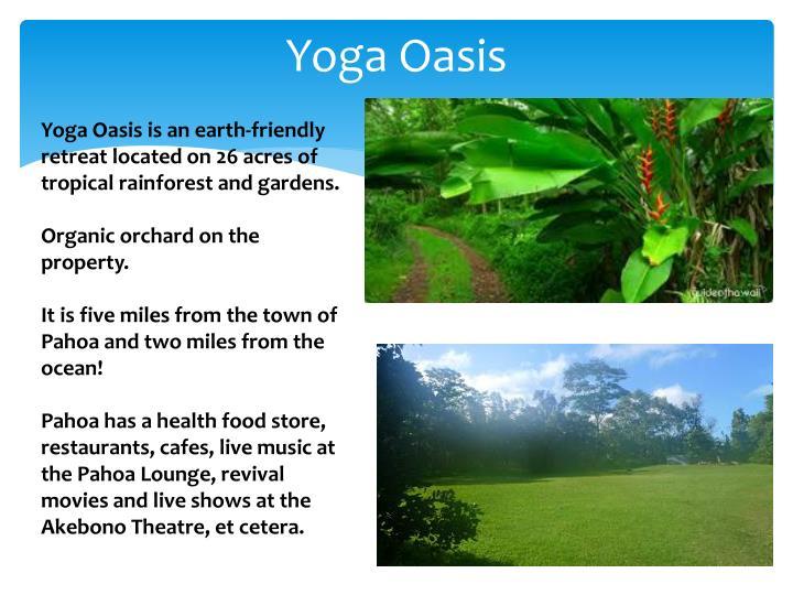 Yoga Oasis