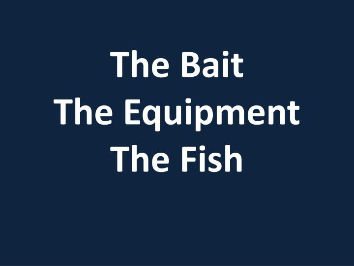 the bait the equipment the fish n.
