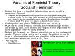 variants of feminist theory socialist feminism