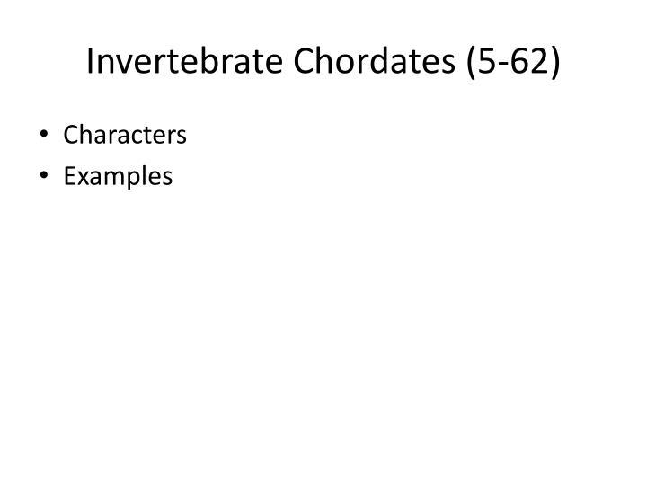 Invertebrate Chordates (5-62)