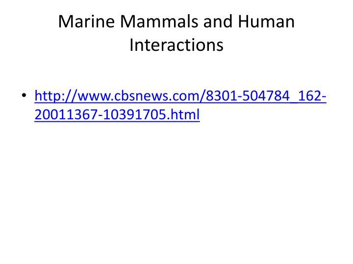 Marine Mammals and Human Interactions